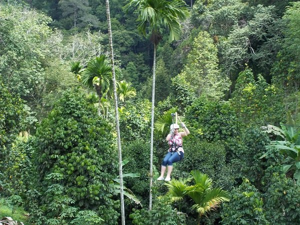 Zipline at Jungle Flight