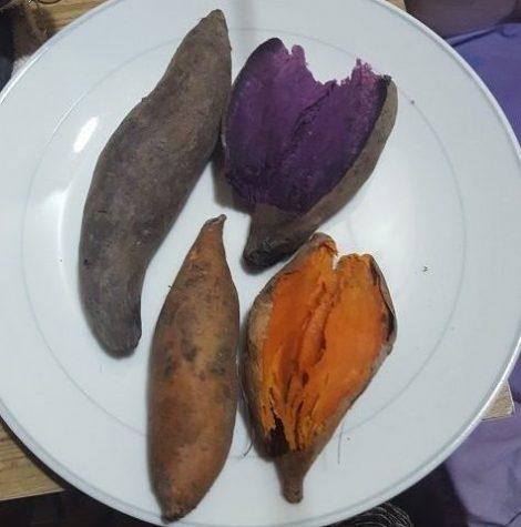Wild Sweet Potatoes