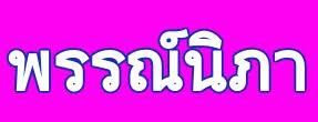 pannipa pattaya bus logo