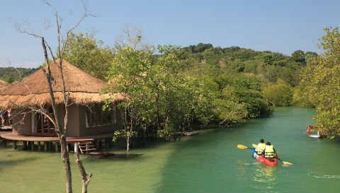 Canoes in Koh Phayam