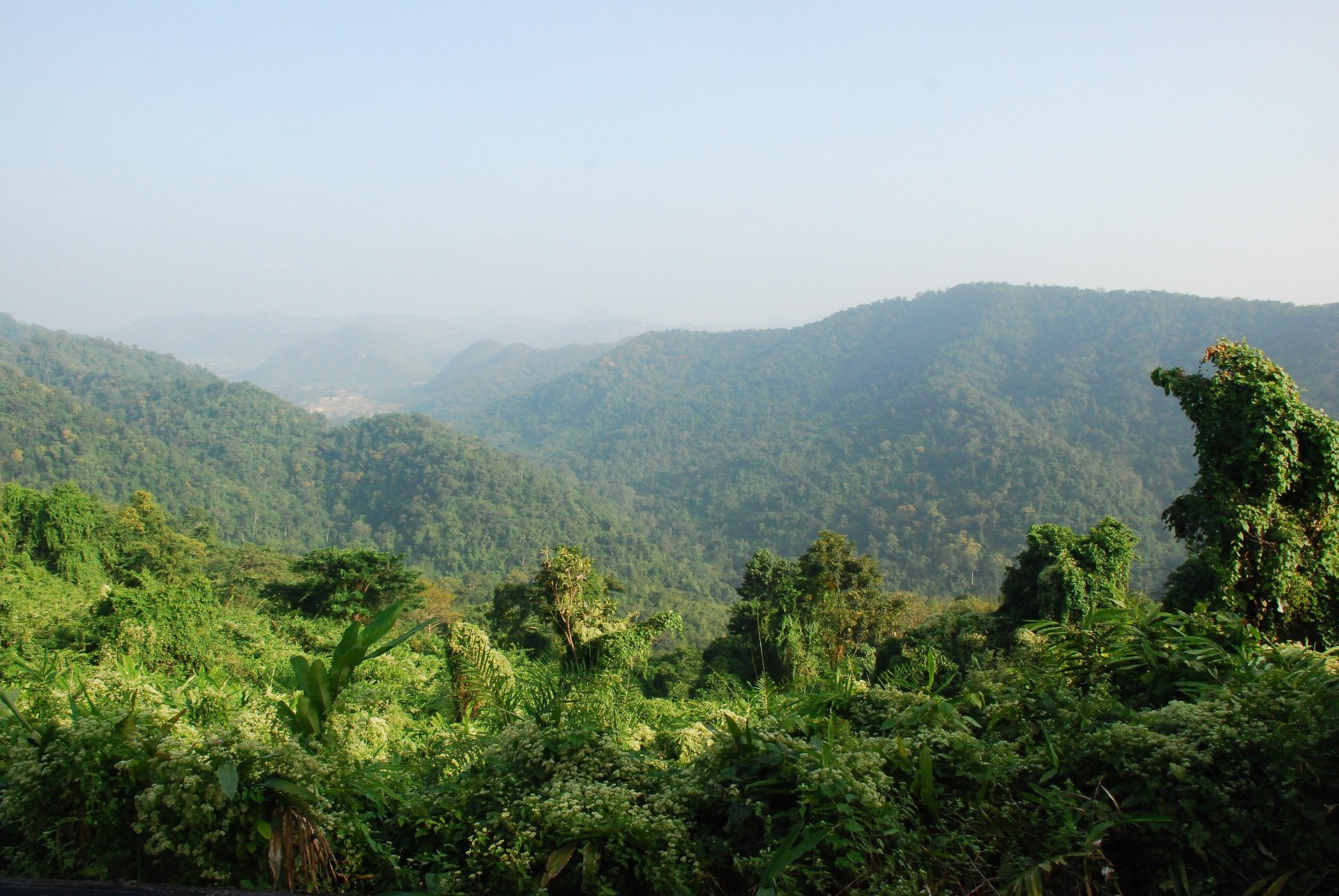 Khao Yai National Park is around 40 minutes by road from Pak Chong town