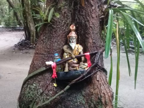 Temple statue growing into the roots of the tree