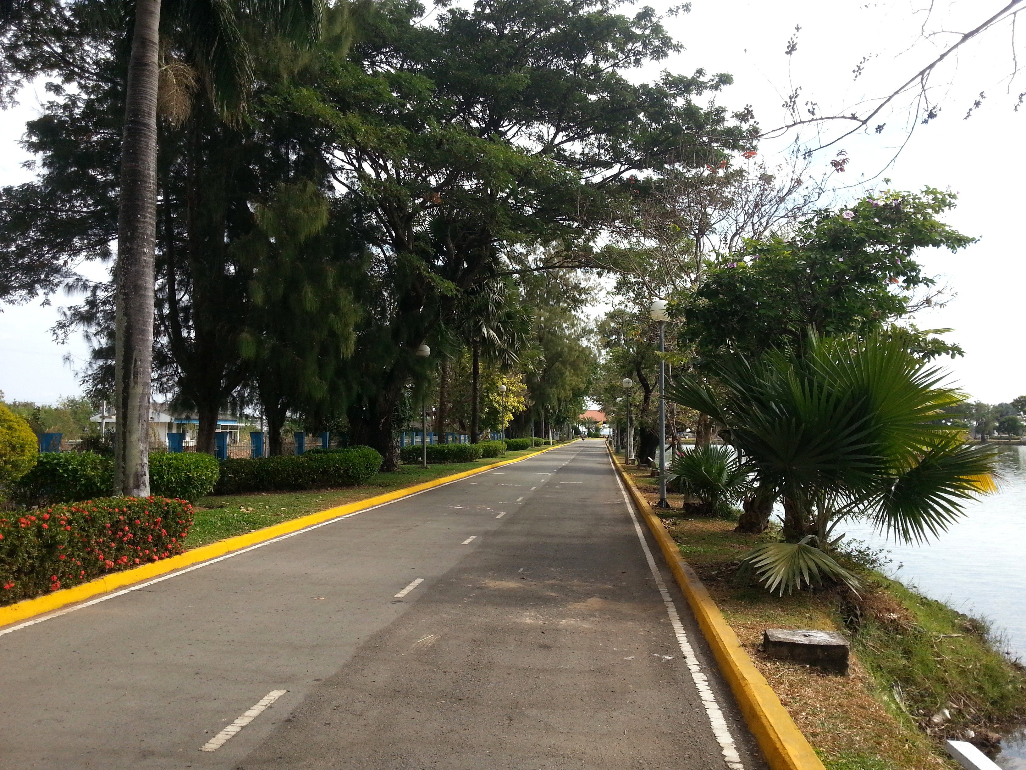 Road around Suan Somdet Phrasinakarin Park