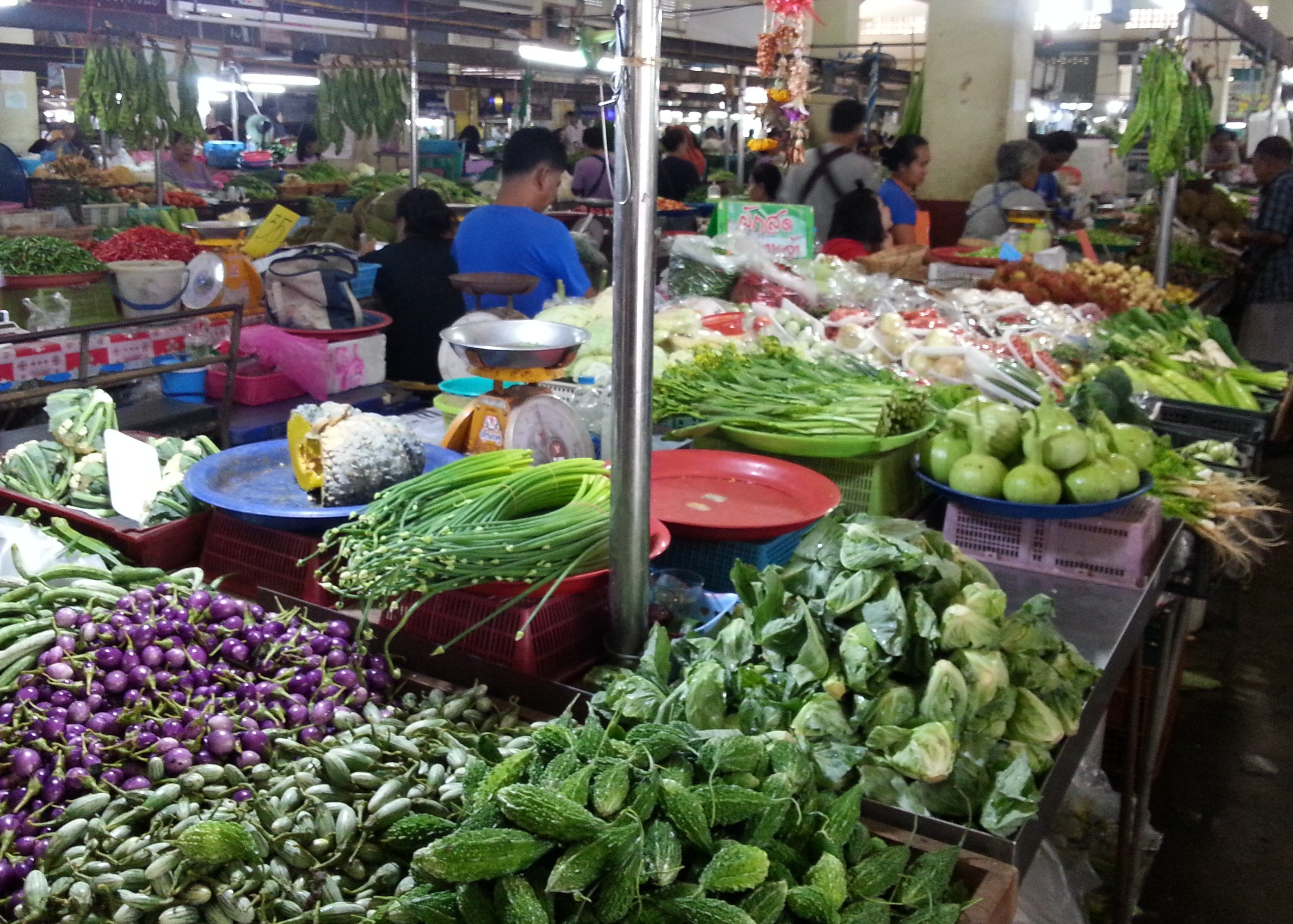 Unusual vegetables grown in Southern Thailand